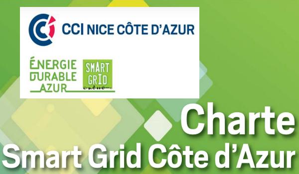La cci et les smart grids aux journ es avem de l lectro - Chambre de commerce et d industrie nice cote d azur ...